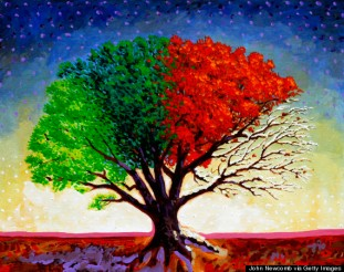 Tree For All Seasons 2007 John Newcomb (b.20th C./American) Acrylic on canvas